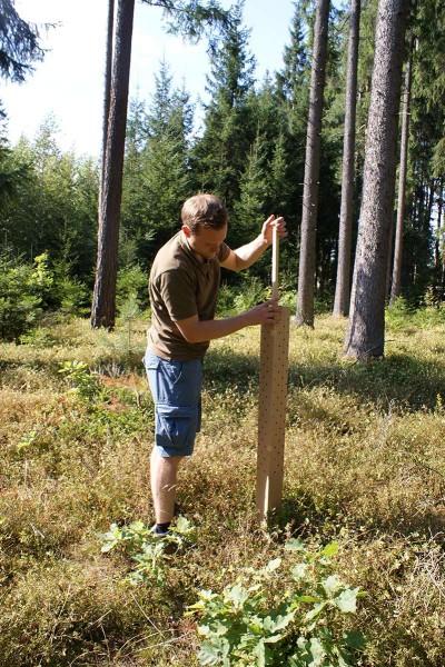 BioWit® NT Natur Typ, Baumschutzsäule
