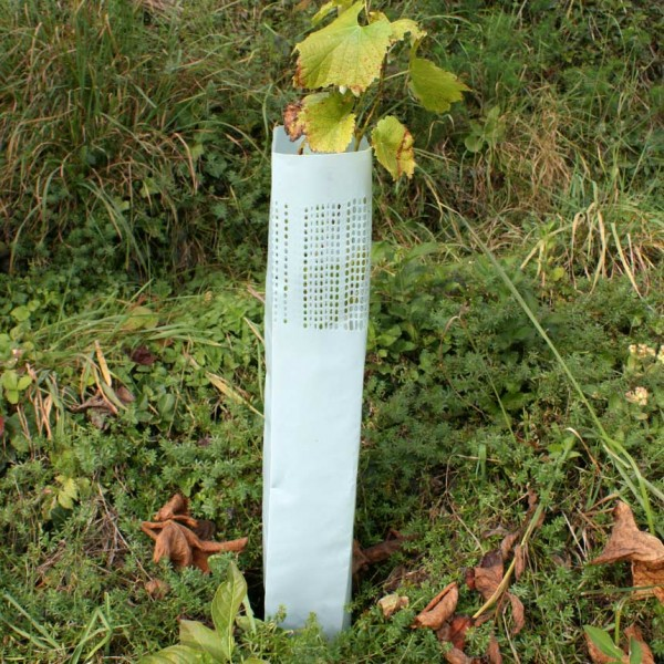 WitaHüll Light, protection height 40 cm, vine protector