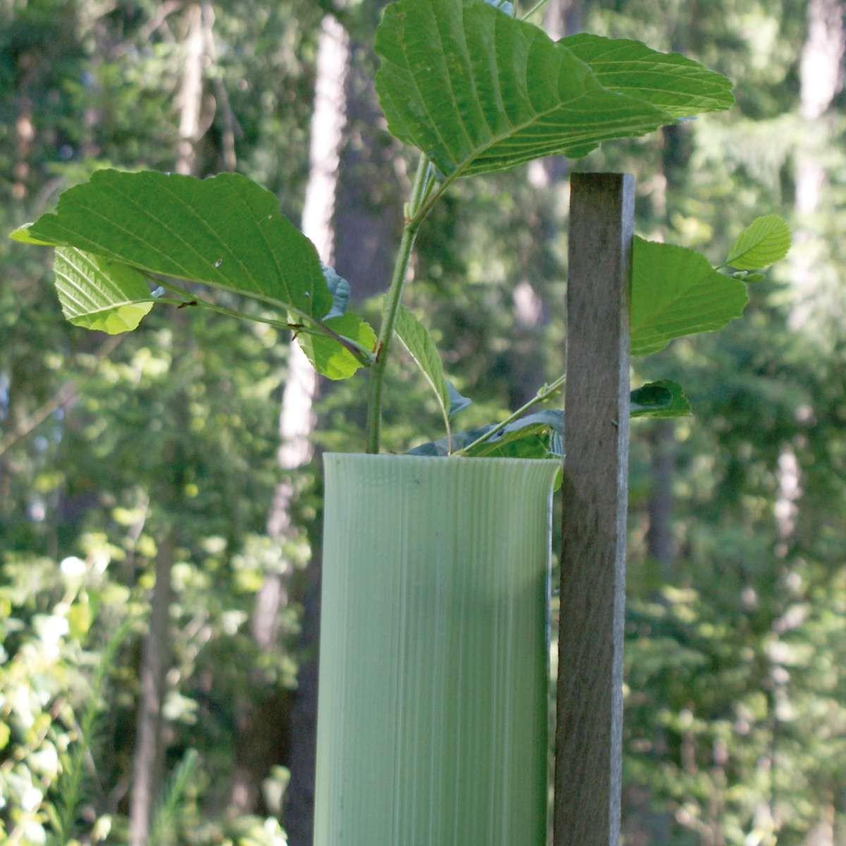 EcoTub® Plus, Baumschutzhülle