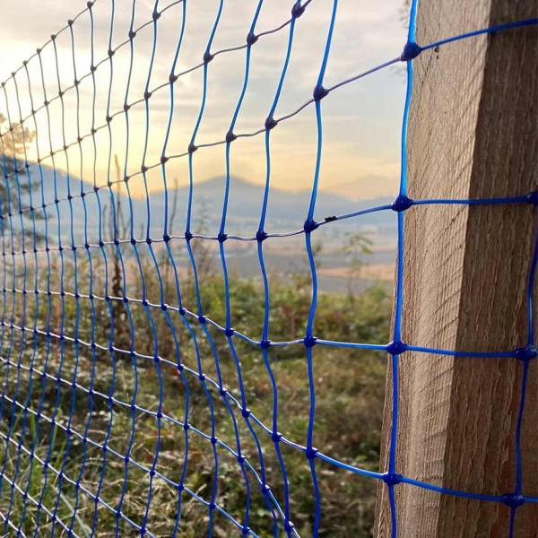 WitaPro game fence with blue meshes
