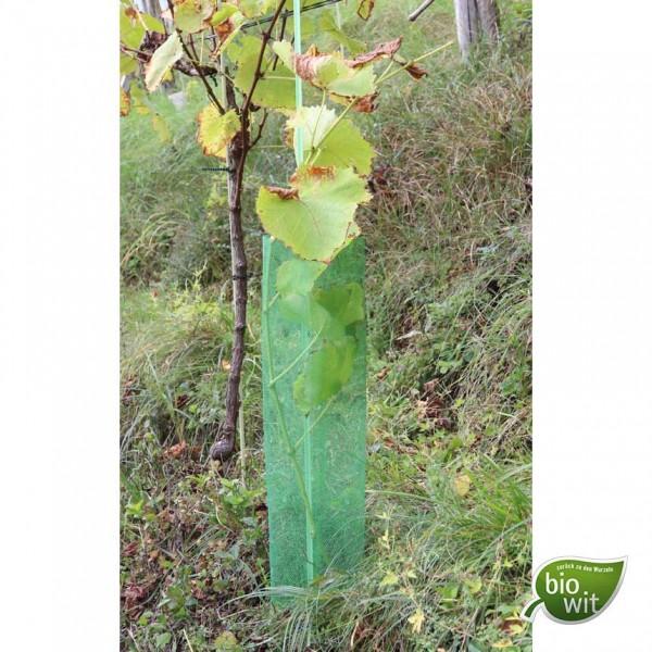 BioWit Klimawit Light 220, 60 cm, biological vine protector tubes