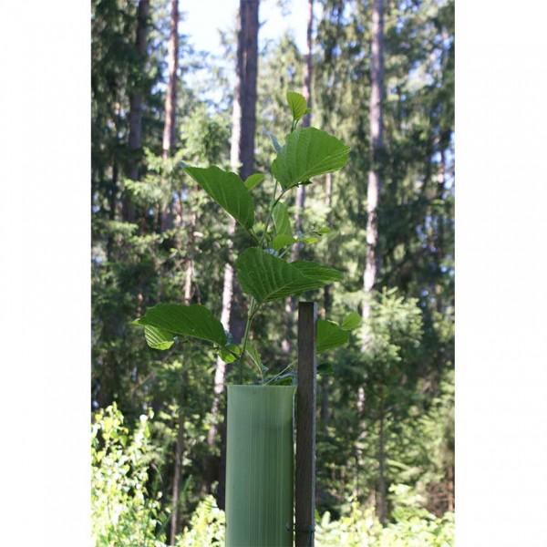 EcoTub Plus3 - 120 cm, geschlossene Baumschutzsäule