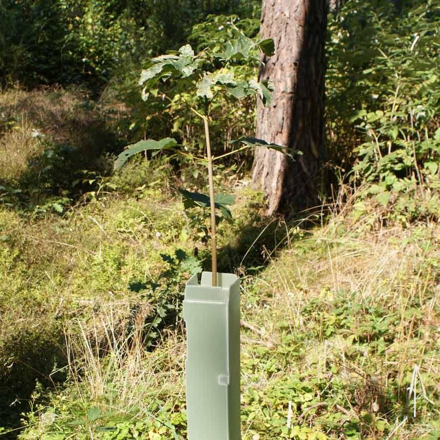 WitaEconom® Typ 120 Baumschutzsäule