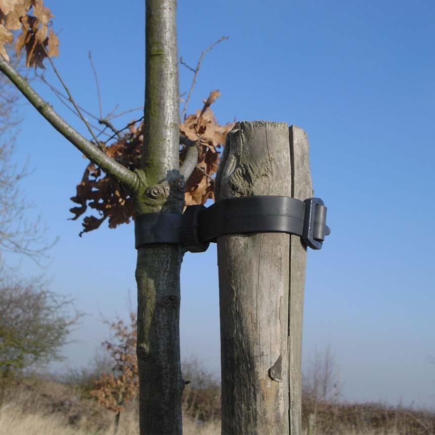 Baumband Econom Anwendungsbeispiel