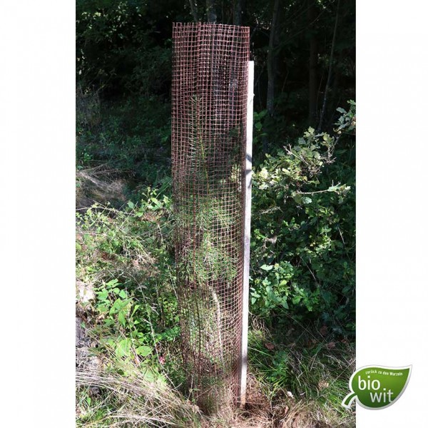 BioWit Freiwuchs 300, protection height 120 cm, biological tree protector tube