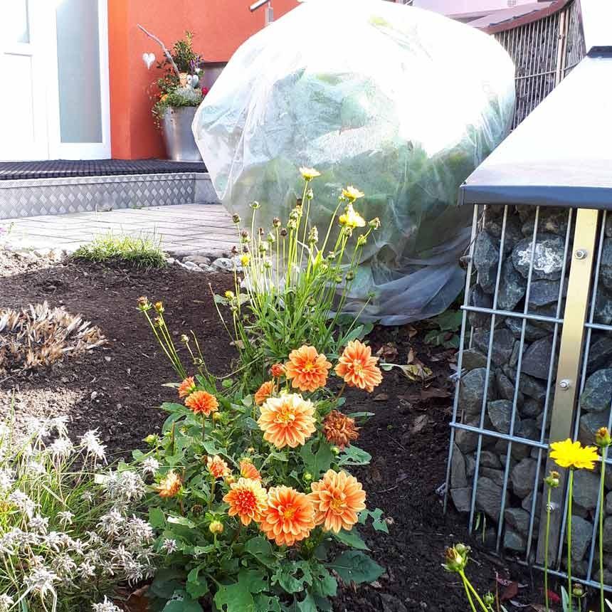 Pflanzenschutzhaube beige, mit Seil - 1,2x1,6m