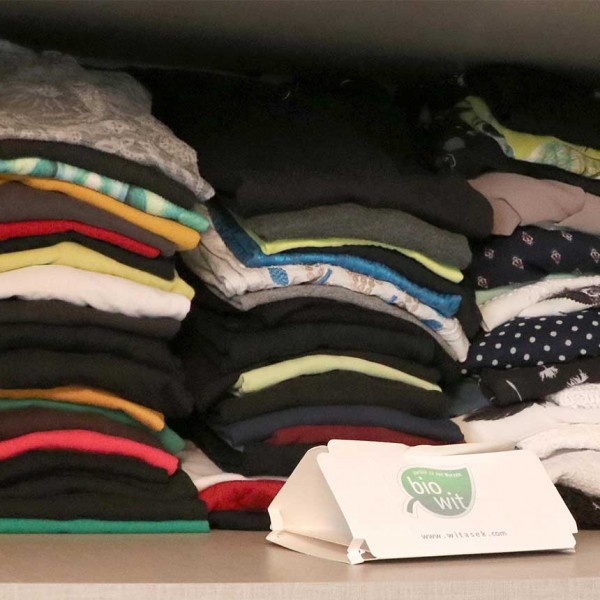WitaTrap Delta super klein zur Bekämpfung der Kleidermotte
