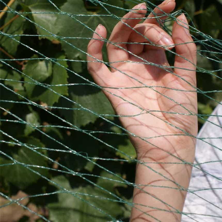 WitaNet Vogelschutz - Vierfachrolle